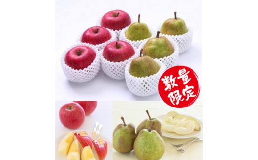 544 ふじりんご・ラフランスの詰合せセット 約5kg (各8玉~13玉)×1箱
