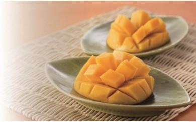 とろけるような甘さと芳醇な香りの恵比寿マンゴー