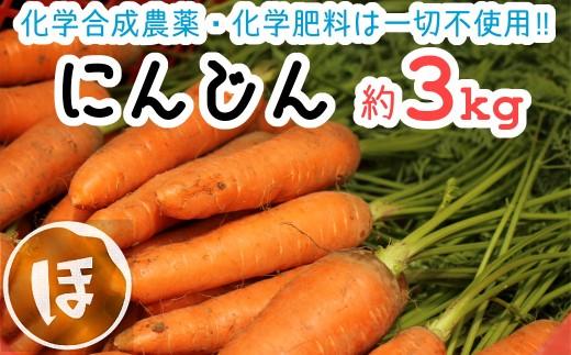 【先行予約】化学合成農薬等不使用で甘みが違う!?ニンジン(約3kg)