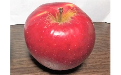 [№5737-0225]紅玉約10kg