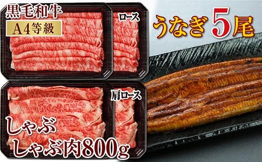 【G-392】鹿児島産黒毛和牛(A4)しゃぶしゃぶ肉800g&うなぎ5尾