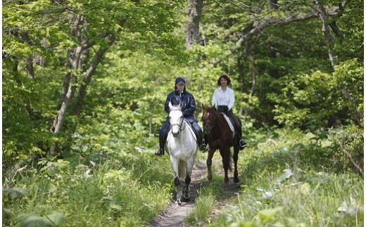 32 ホロシリ乗馬クラブ 乗馬体験セット 25,000円