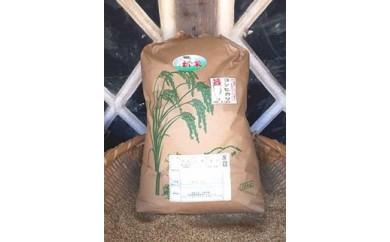 ★新米予約★美浦の逸品「本橋さんちの1等米コシヒカリ」玄米15kg【15㎏】