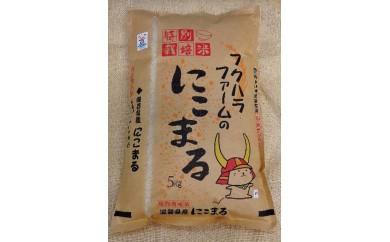 ひこにゃんの町のお米「にこまる」5kg