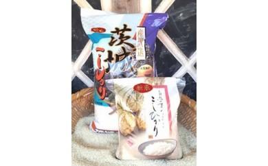 ★新米予約★美浦の逸品「本橋さんちの1等米コシヒカリ」10kg+2kg【12㎏】