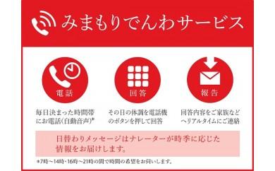 みまもりでんわサービス[固定電話コース](6カ月)