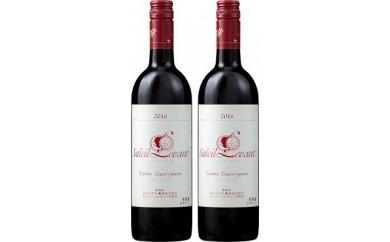 C106 月山ワイン赤セット