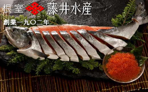 CB-23012 【北海道根室産】<鮭匠ふじい>新巻鮭・いくら
