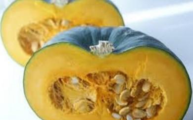 [№4631-1453]栗のような味わい 栗五郎かぼちゃ たっぷり約10kg ※クレジット決済のみ