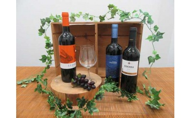 スペインワイン〈赤〉飲み比べセット 各750ml 計3本