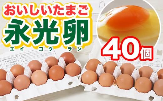 A)おいしいたまご永光卵 40個