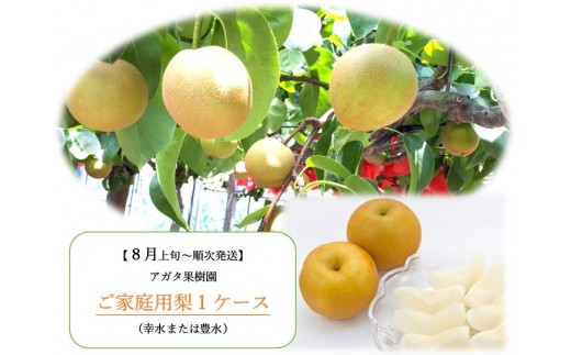 A-87.アガタ果樹園のご家庭用梨(幸水または豊水)1ケース(約2kg+300g)【数量限定50】
