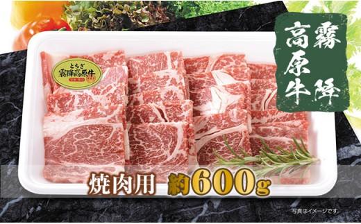 B023・栃木県産霧降高原牛 焼肉用(約600g)