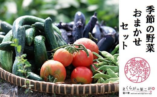 BQ02_道の駅まくらがの里古河 季節の新鮮野菜おまかせセット