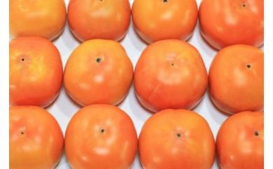 和歌山県産 富有柿 約7.5kg(30~40玉)