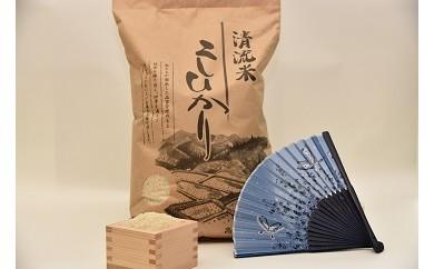 勝山産 美食米コシヒカリ 5Kgx2