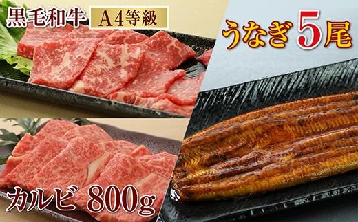 【G-399】鹿児島産黒毛和牛(A4)カルビ800g& うなぎ 5尾