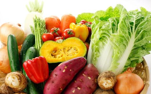 A21 養生市場 野菜セット