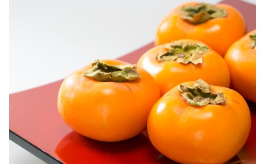 NA406 庄内の秋の味覚 橙色に輝く「庄内柿」