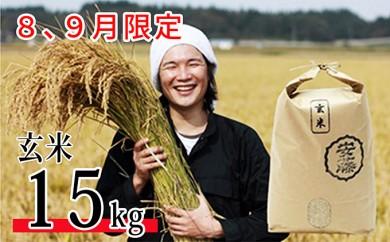[№5732-0178]【8、9月限定】 新米 あきたこまち 玄米 15kg <クレジット限定>