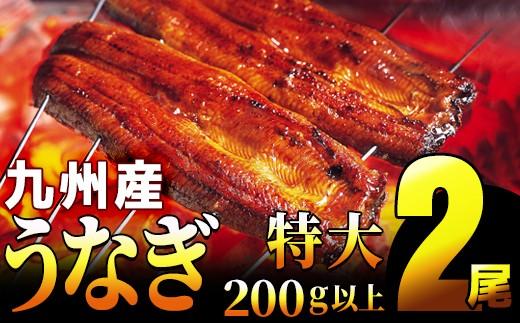 【一尾200g以上!×2尾】特大!肉厚! 九州特選うなぎ