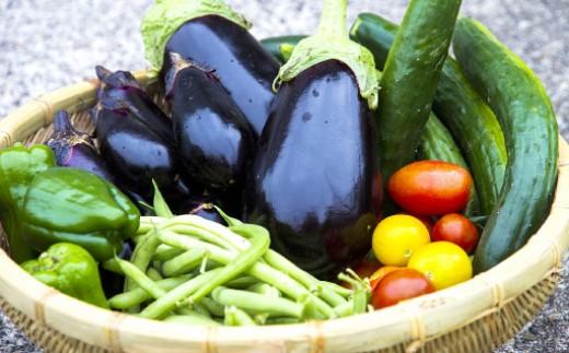 吉備中央町の野菜詰め合わせBセット