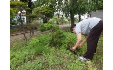[№5704-0166]【岩沼市】空き家管理サービスB(見回り・ゴミ拾いや草刈・報告)