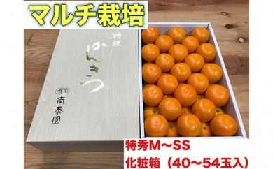 [№5745-1255]【マルチ栽培・有田みかん】化粧箱『特秀』約3kg(M~SSサイズおまかせ)