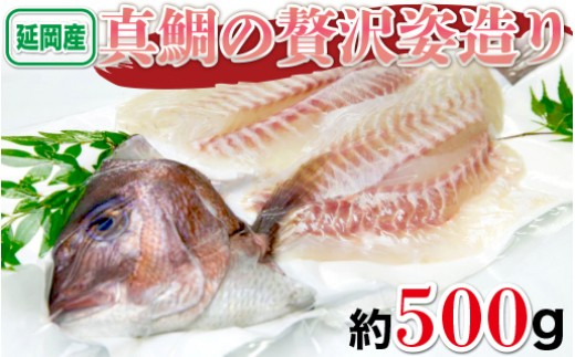 B18 延岡産活〆真鯛の贅沢姿造り