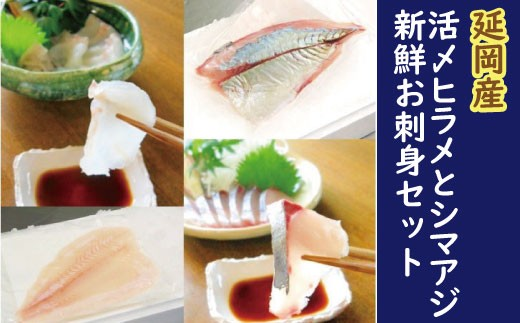 F10 延岡産活〆ヒラメとシマアジの豪華お刺身セット