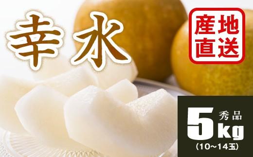 B705 【産地直送】幸水梨約5kg(10~14玉)