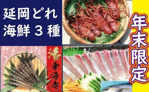 Q5 年末限定 延岡どれ海鮮3種セット