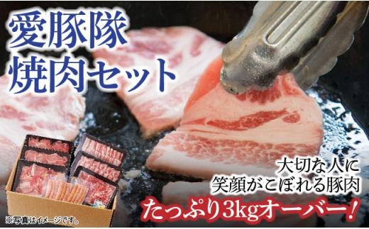 H0610愛豚隊焼肉セット