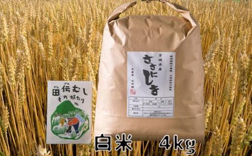 田伝むしのササニシキ白米4kg(農薬:栽培期間中不使用)