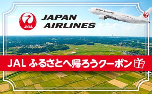 JAL01 【大任町】JAL ふるさとへ帰ろうクーポン(3,000点分)【10000pt】