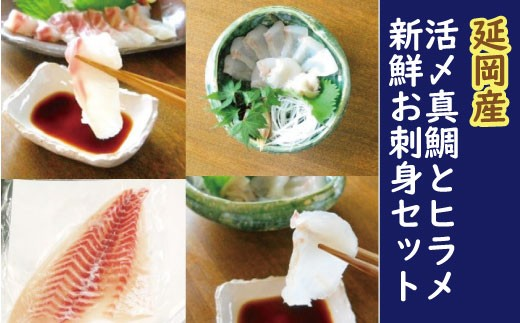 F8 豪華白身の饗宴!延岡産活〆真鯛とヒラメの新鮮お刺身セット