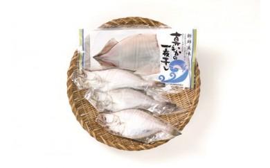 D053 山形県庄内浜海宝味比べAセット