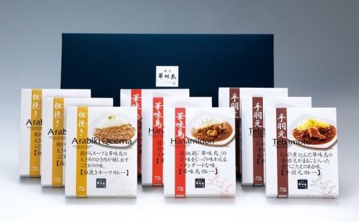 【A2-002】福岡「華味鳥」 カレー セット 9食 詰め合わせ