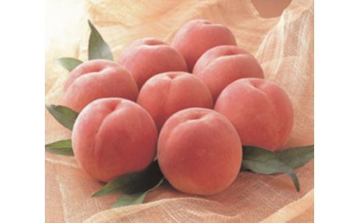 FY18-244 山形農協 山形市産 もも (白桃) 約5kg (20玉)