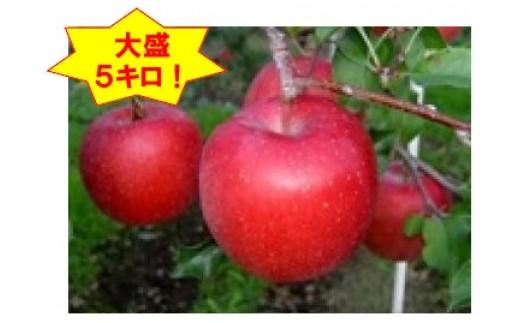 [B09]「サンふじ」太陽をいっぱい浴びて育ったりんごの王様【大盛5kg】