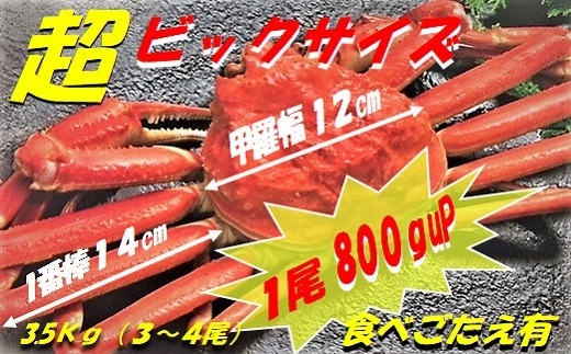 CD-45012 ボイルずわいがに姿3.5kg(3~4尾入)