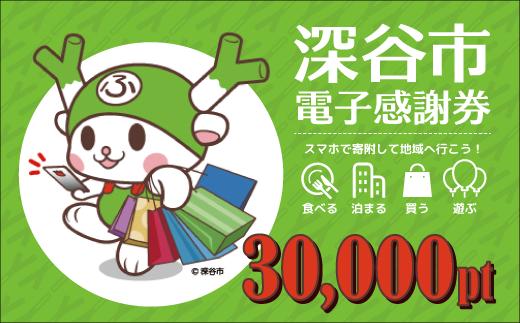 [№5674-0344]深谷市 電子感謝券 30,000pt