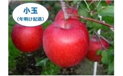 [AH05]「サンふじ」太陽をいっぱい浴びて育ったりんごの王様【小玉】