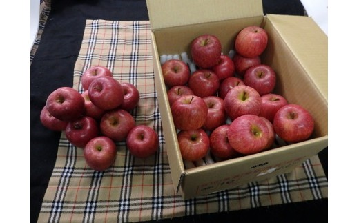 696 【先行予約】雪んこ 完熟みつ入りふじりんご 約10kg