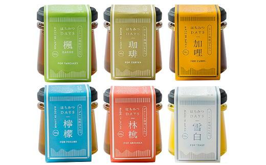 S10-31 はちみつDAYS ギフトBOX 6本セット(雪白、林檎、檸檬、楓、珈琲、加哩)
