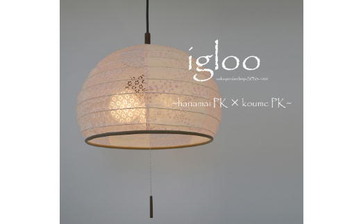D24-01 igloo SPN3-1026 花舞ピンク×小梅ピンク
