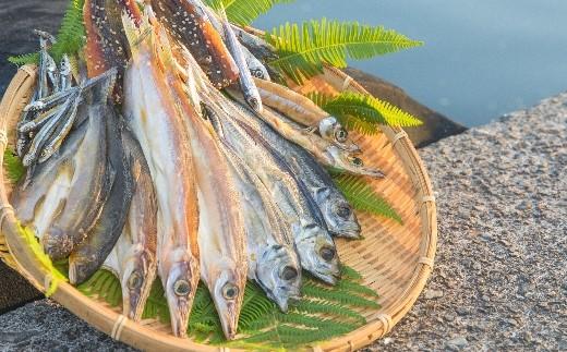 NSM03 海陽町産のお魚を使った絶品干物 鮎や太刀魚など7種類セット! 寄付額7,000円