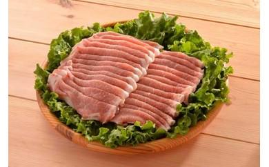 AD7010-C田んぼ豚ローススライス1kg【しょうが焼き、贈答に】【14000pt】