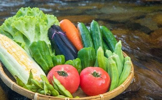 SGN14【定期便年2回】阿波の国海陽町 旬のお野菜詰め合わせセット 寄附額10,000円