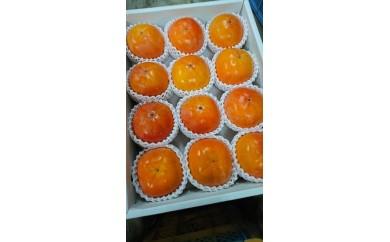 国城観光農園 富有柿(3~4L)